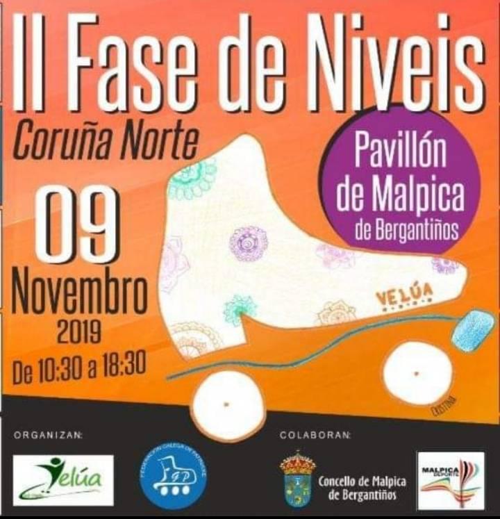 CAMPEONATO FEDERATIVO NIVELES 1 AL 3